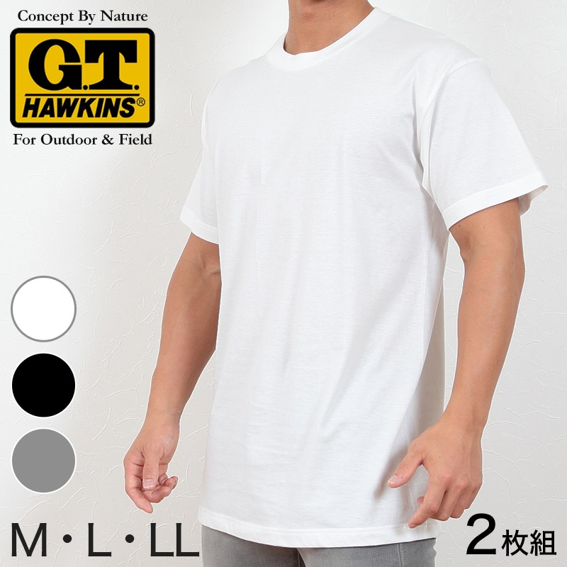 グンゼ Tシャツ メンズ 半袖 綿100% 2枚組 M〜LL