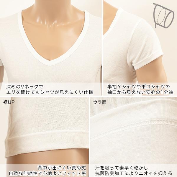 ヘインズ シャツ クールビズ魂 メンズ 深Vネック 1分袖シャツ 2枚組 COOL 3L〜5L (Hanes BIZ DAMASHII COOL 1分袖 抗菌防臭 吸汗速乾 心地よいフィット感 ポロシャツでも見えにくい 背中が出にくい長め丈 深V 大きいサイズあり 大きめ 3L 4L 5L)